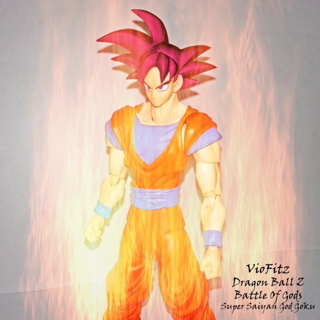 Super Saiyan God Goku?
